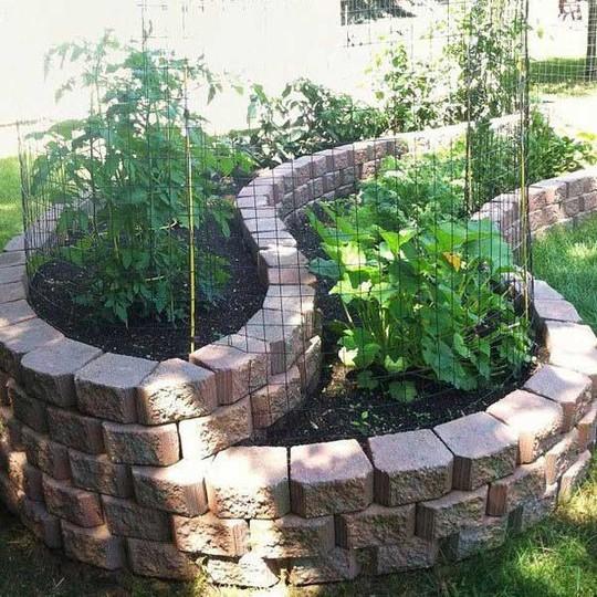 Sáng tạo này sẽ biến đất trống thành vườn rau đẹp - Ảnh 8.