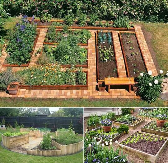 Sáng tạo này sẽ biến đất trống thành vườn rau đẹp - Ảnh 10.