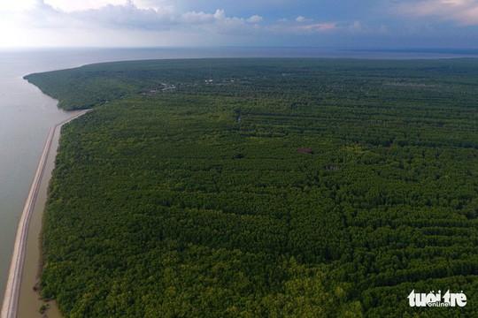 Ngắm khu dự trữ sinh quyển thế giới Mũi Cà Mau từ trên cao - Ảnh 3.