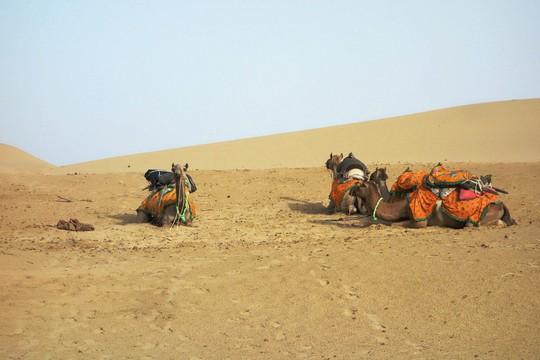 Thành bang bốn màu ở Ấn Độ - điểm đến rực rỡ cho mùa hè - Ảnh 5.
