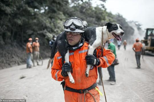 Khốc liệt hình ảnh trước và sau thảm họa núi lửa ở Guatemala - Ảnh 13.
