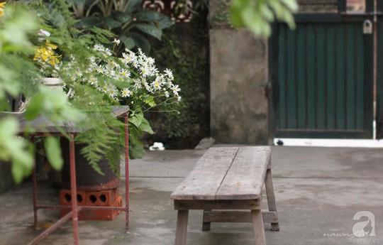 Ngôi nhà góc nào cũng xinh xắn của một phụ nữ Hà Thành - Ảnh 6.