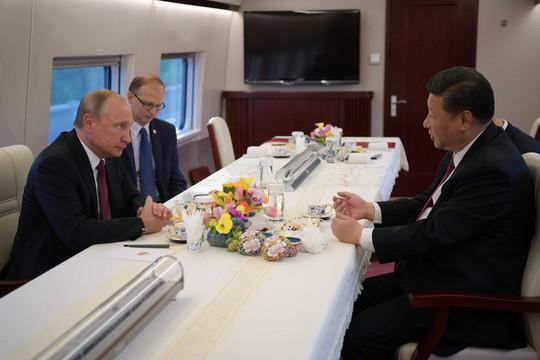 Chủ tịch Trung Quốc tặng ông Putin món quà độc nhất vô nhị - Ảnh 3.