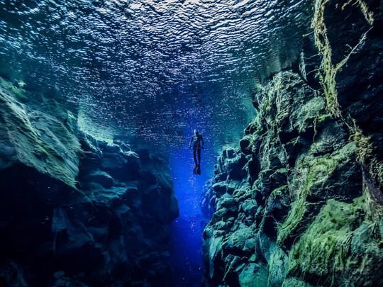 Lạc xuống thủy cung với loạt ảnh đại dương đẹp ngỡ ngàng - Ảnh 14.