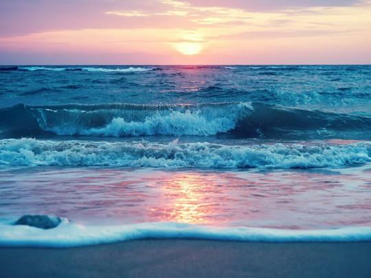 Lạc xuống thủy cung với loạt ảnh đại dương đẹp ngỡ ngàng - Ảnh 4.