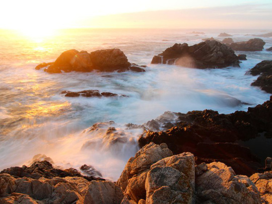 Lạc xuống thủy cung với loạt ảnh đại dương đẹp ngỡ ngàng - Ảnh 8.