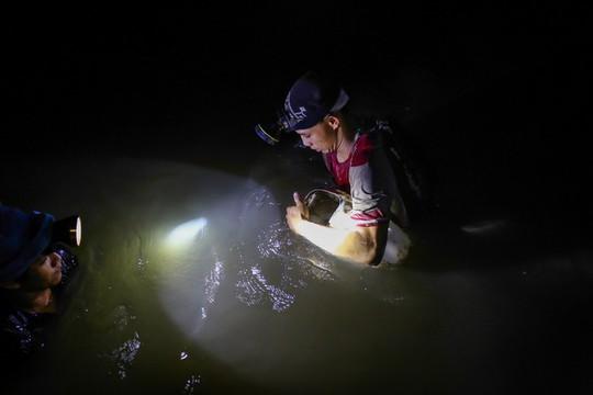 Cần Giờ: Lội rừng ngập mặn bắt ba khía trong đêm - Ảnh 7.
