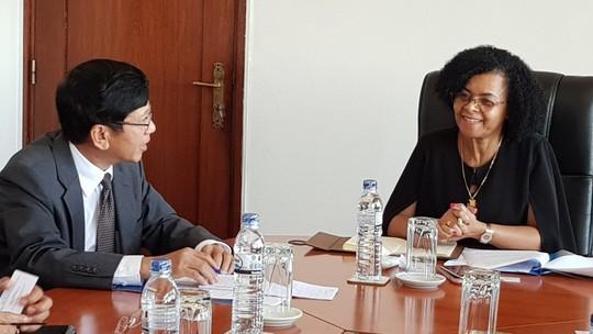 Mozambique muốn Viettel đẩy mạnh đầu tư mạng 4G và Việt Nam đầu tư GTVT - Ảnh 1.