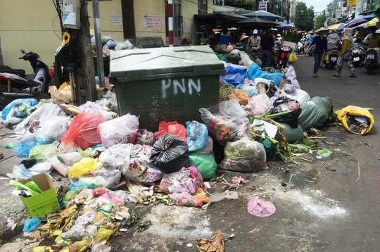 Quảng Ngãi sẽ thu gom rác khẩn cấp trong ngày 12-7 - Ảnh 1.
