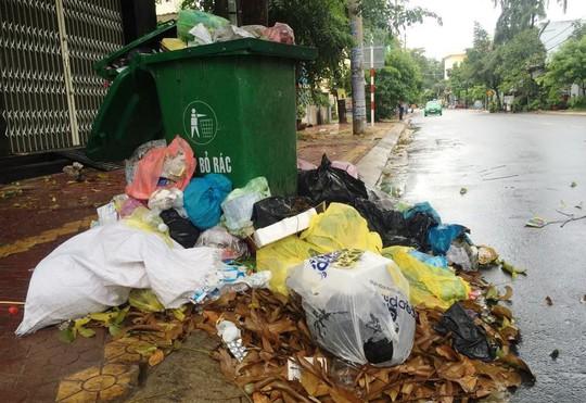 Quảng Ngãi sẽ thu gom rác khẩn cấp trong ngày 12-7 - Ảnh 2.