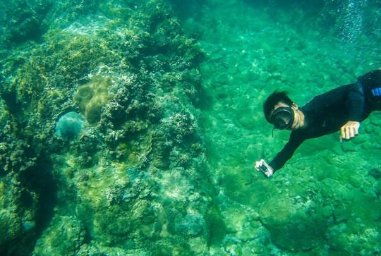 Cuối tuần lặn biển ngắm san hô dù không biết bơi - ảnh 4