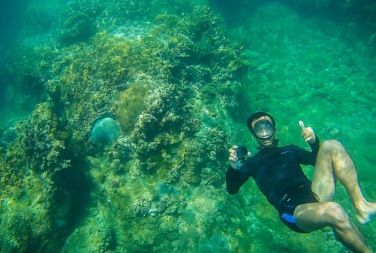 Cuối tuần lặn biển ngắm san hô dù không biết bơi - ảnh 2