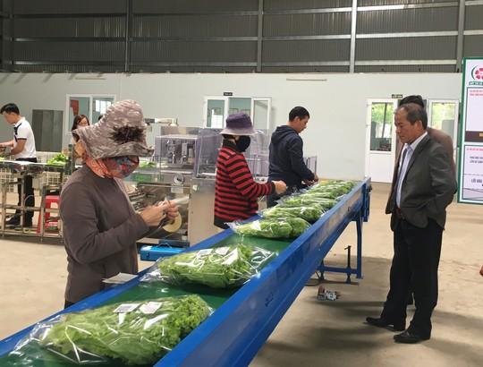 Sơ chế nông sản tại nguồn, các bên cùng hưởng lợi
