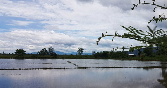 Vụ đội bóng mắc kẹt: Nông dân Thái Lan từ chối nhận đền bù - Ảnh 2.