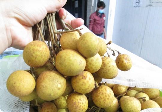 98% nhãn Việt Nam xuất khẩu là bán cho Trung Quốc - Ảnh 1.
