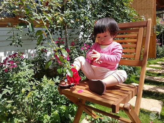 Mê mẩn khu vườn hoa hồng đẹp như mơ ở Đà Lạt - Ảnh 7.