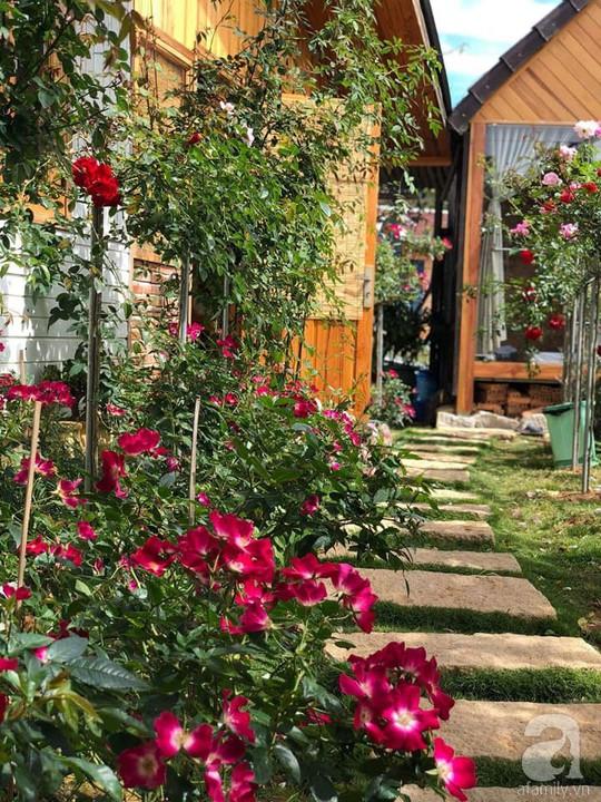 Mê mẩn khu vườn hoa hồng đẹp như mơ ở Đà Lạt - Ảnh 9.