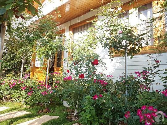 Mê mẩn khu vườn hoa hồng đẹp như mơ ở Đà Lạt - Ảnh 12.