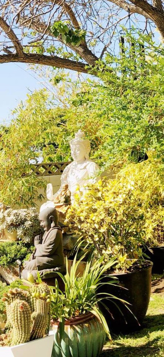 Ca sĩ Hồng Nhung khoe biệt thự triệu đô cùng sân vườn xanh mát ở Mỹ - Ảnh 17.