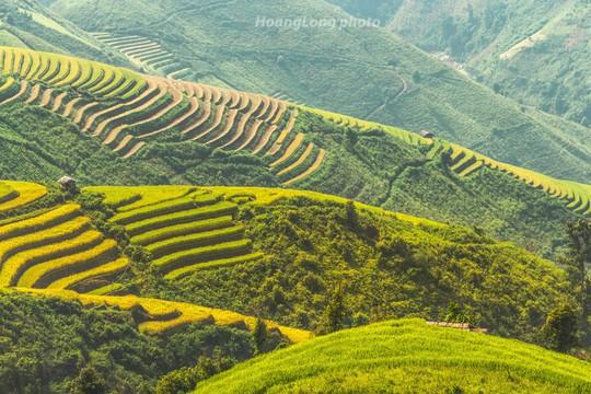 Đến Sơn La, đừng quên khám phá những địa danh tuyệt đẹp này - Ảnh 18.