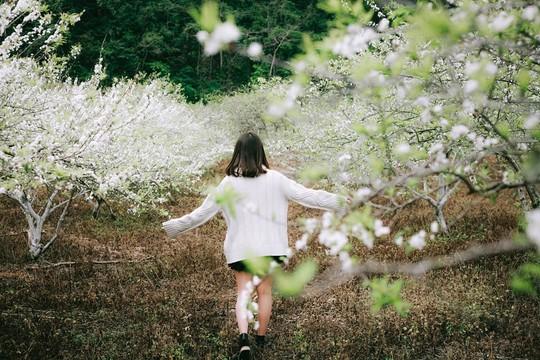 Đến Sơn La, đừng quên khám phá những địa danh tuyệt đẹp này - Ảnh 3.