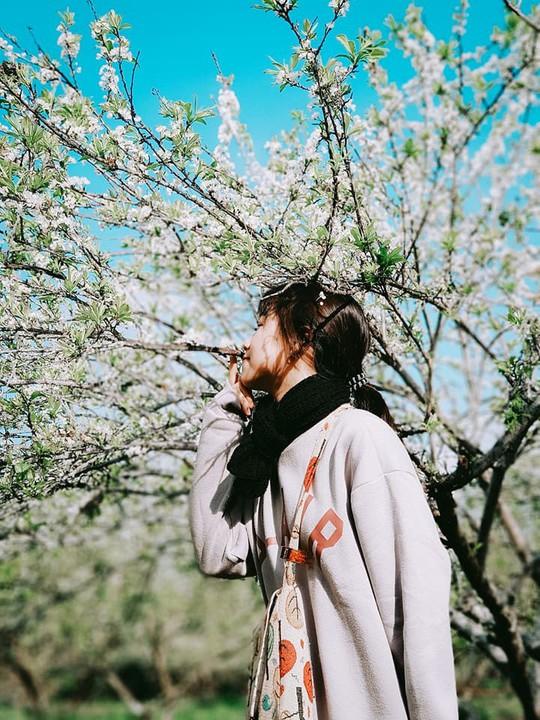 Đến Sơn La, đừng quên khám phá những địa danh tuyệt đẹp này - Ảnh 4.