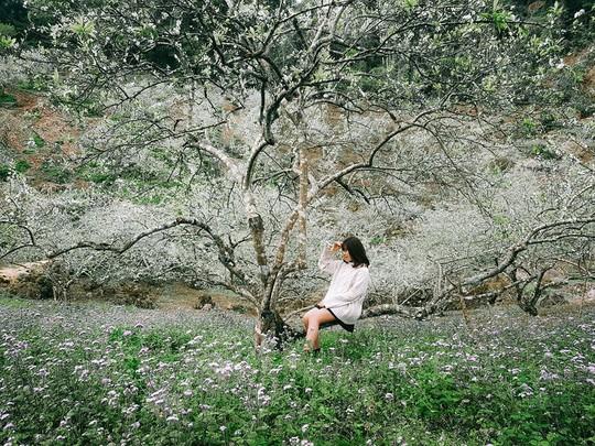 Đến Sơn La, đừng quên khám phá những địa danh tuyệt đẹp này - Ảnh 6.