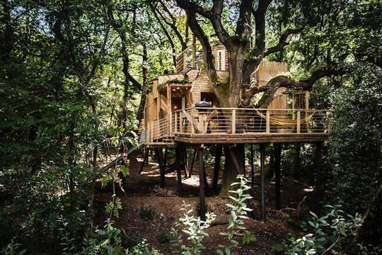 9 ngôi nhà nhỏ khiến bạn bỏ lại thành thị ồn ào để hòa mình vào với thiên nhiên - Ảnh 6.