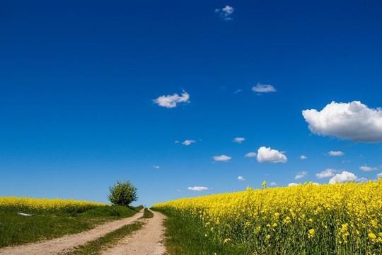 8 nơi đẹp quyến rũ nhất đất nước Thụy Điển - Ảnh 2.