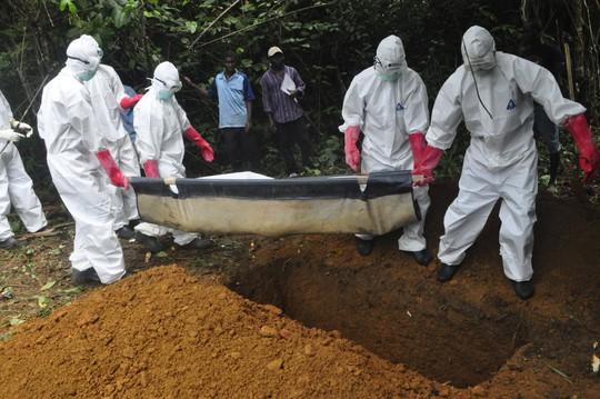 Phát hiện chủng mới của virus Ebola khét tiếng - Ảnh 1.