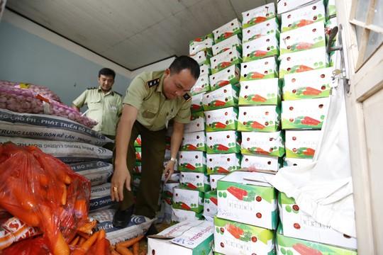 Tịch thu gần 4 tấn cà rốt Trung Quốc nhập lậu