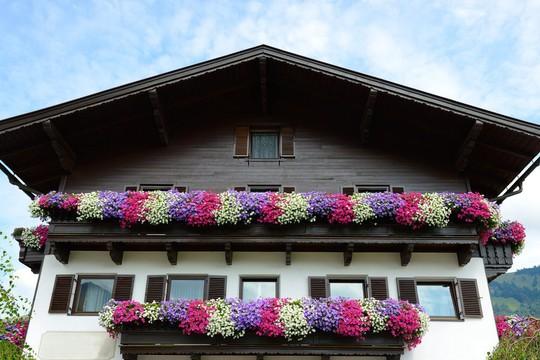 Những khung cửa sổ đẹp hút hồn nhờ sắc hoa rực rỡ - Ảnh 11.