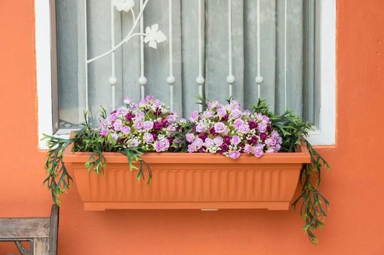 Những khung cửa sổ đẹp hút hồn nhờ sắc hoa rực rỡ - Ảnh 14.