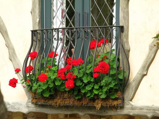 Những khung cửa sổ đẹp hút hồn nhờ sắc hoa rực rỡ - Ảnh 18.