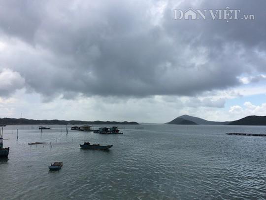 Khám phá vẻ đẹp hoang sơ trên đảo tiền tiêu Vĩnh Thực - Ảnh 12.