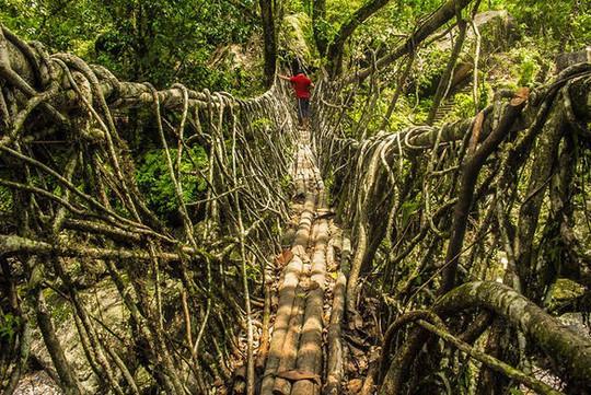 Cầu Vàng Đà Nẵng vào top những cầu đi bộ ấn tượng nhất thế giới - Ảnh 8.