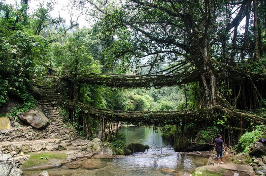 Cầu Vàng Đà Nẵng vào top những cầu đi bộ ấn tượng nhất thế giới - Ảnh 10.