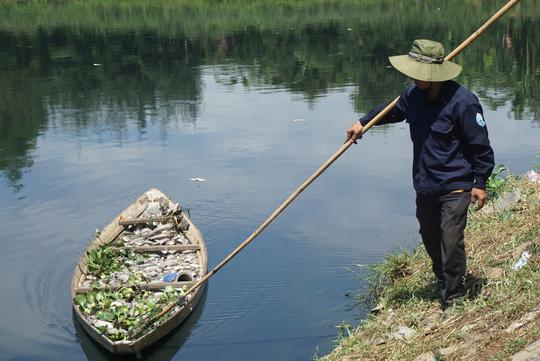 Đà Nẵng: Hàng tấn cá rô phi chết trắng tại mặt hồ điều tiết - Ảnh 3.