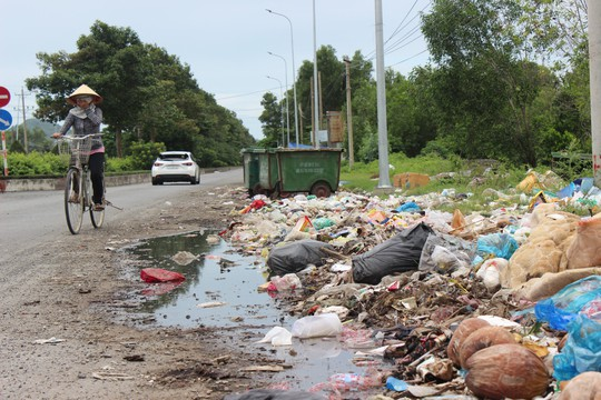 Ớn với cảnh rác tấn công ở Bà Rịa - Vũng Tàu - Ảnh 1.