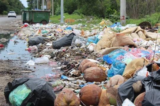 Ớn với cảnh rác tấn công ở Bà Rịa - Vũng Tàu - Ảnh 6.
