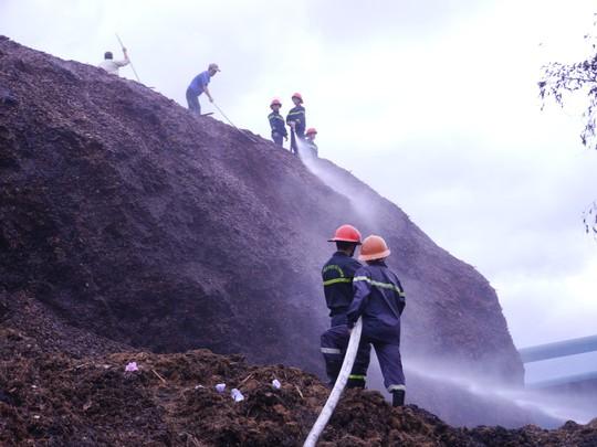 Bình Định: Hàng trăm người tham gia dập tắt đám cháy ở kho dăm gỗ - ảnh 1