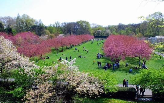 Những khu vườn bách thảo tuyệt đẹp nổi tiếng thế giới - Ảnh 1.