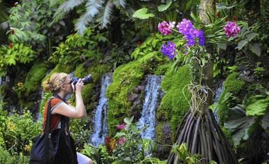 Những khu vườn bách thảo tuyệt đẹp nổi tiếng thế giới - Ảnh 7.
