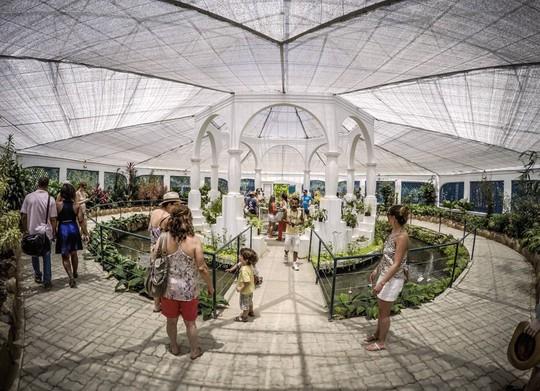 Những khu vườn bách thảo tuyệt đẹp nổi tiếng thế giới - Ảnh 8.