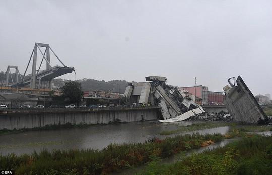 Sập cầu trên đường cao tốc, ít nhất 35 người thiệt mạng - Ảnh 15.