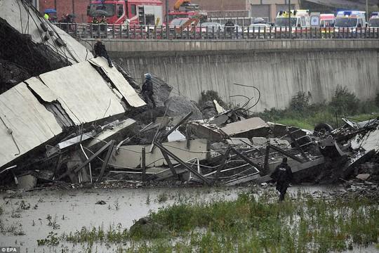 Sập cầu trên đường cao tốc, ít nhất 35 người thiệt mạng - Ảnh 9.