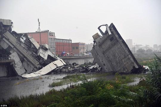 Sập cầu trên đường cao tốc, ít nhất 35 người thiệt mạng - Ảnh 8.