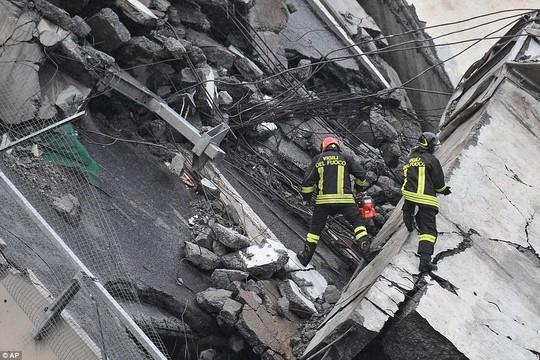 Sập cầu trên đường cao tốc, ít nhất 35 người thiệt mạng - Ảnh 7.