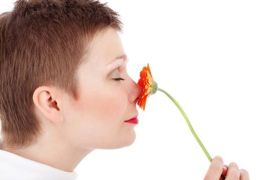 Bí ẩn mùi hương ma cảnh báo bất ổn ở người trưởng thành - Ảnh 1.