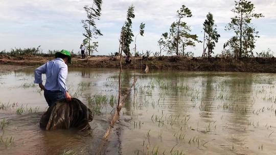 Khai thác nguồn lợi thủy sản mùa nước nổi mang tính tận diệt - Ảnh 8.